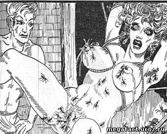 Жестокие пытки половых органов фото 52-281